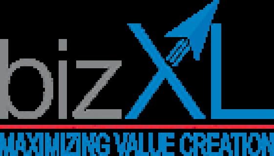 bizxl-solution-logo
